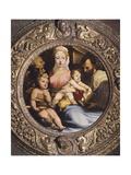Holy Family Giclee Print by Domenico Beccafumi