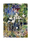 A Flower Garden, 1893 Giclee Print by Childe Hassam