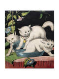 Three White Cats and Tub Reproduction procédé giclée par Louis Wain