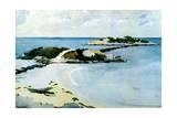 The Favorite, 1899-1901 Giclée-tryk af Winslow Homer