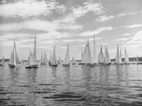 Boats Lined up for a Race on Lake Washington Fotografisk trykk av Ray Krantz