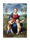 Madonna Del Cardellino (Madonna of the Goldfinch) by Raphael Giclée-vedos