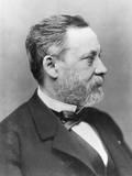 Portrait of Louis Pasteur Fotoprint van  Nadar