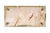 Diver, Circa 480-490 BC Giclée-vedos