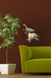 Flying Malard Ducks Veggoverføringsbilde
