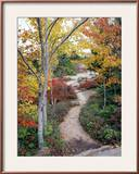 Penobscot Mountain Hiking Trails in Fall, Maine, USA Framed Photographic Print by Jerry & Marcy Monkman