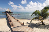 Placencia, Belize. Roberts Grove Resort, Pier Leads from Beach to Bar Reproduction photographique par Trish Drury