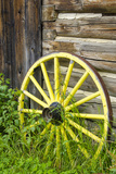 Wagon Wheel in Old Gold Town Barkersville, British Columbia, Canada Stretched Canvas Print by Michael DeFreitas