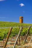 USA, Washington, Yakima Valley. Col Solare Winery and Vineyard Reproduction photographique par Richard Duval