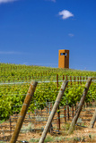 USA, Washington, Yakima Valley. Col Solare Winery and Vineyard Lámina fotográfica por Richard Duval