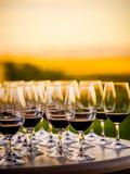 USA, Washington, Walla Walla. Tasting at Winery in Wine Country Fotoprint van Richard Duval