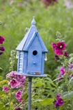 Blue Birdhouse Near Hollyhocks. Marion, Illinois, Usa Fotografisk trykk av Richard ans Susan Day