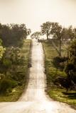 Road Cycling in Texas Hill Country Near Fredericksburg, Texas, Usa Stampa fotografica di Chuck Haney