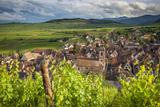 Village of Riquewihr, Along the Wine Route, Alsace Haut-Rhin France Lámina fotográfica por Brian Jannsen