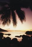Seychelles, Mahe Island, Beau Vallon Bay, Sunrise Fotografisk tryk af Nik Wheeler