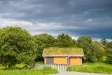 Scandinavian House with Grass Covered Roof Fotografisk trykk av  Lamarinx