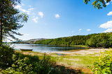 Panoramic View of A Lake with Boat from A Forest in Northern Norway Fotografisk trykk av  Lamarinx