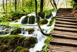 Wooden Track near A Forest Waterfall in Plitvice Lakes National Park, Croatia Fotografisk trykk av  Lamarinx