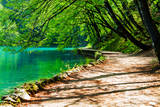 Path near A Forest Lake in Plitvice Lakes National Park, Croatia Fotografisk trykk av  Lamarinx