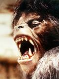 An American Werewolf in London Foto