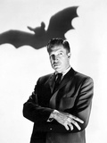 The Bat Foto