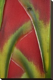 Ant on Heliconia , Costa Rica Stretched Canvas Print by Tim Fitzharris