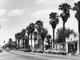 USA, Palm Springs Photographic Print