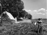 Scarecrow on a Farm Photographic Print