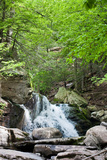 Catskills Hidden Falls Photo Print Poster Poster