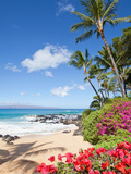 Tropical Beach Photographic Print by M Swiet Productions