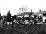Herfordshire Fox Hunt Photographic Print by Fred Musto
