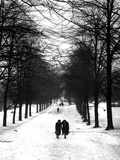 Hampstead Heath 1939 Photographic Print by Fred Musto