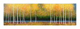 Grove Panorama Giclee Print by Melissa Graves-Brown