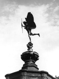 Statue of Eros Photographic Print by Fred Musto