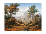 The Lion Family Giclée-tryk af Thomas Baines