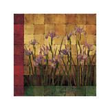 Jardin d'iris Reproduction procédé giclée par Marcia Wells