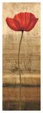 Poppy Panel I Giclee Print by Andrea Kahn