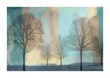 Misty Morning I Reproduction procédé giclée par Chris Donovan