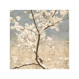 Cherry Blossoms I Giclée-tryk af John Seba