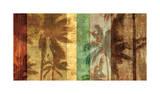 Palm Shadows II Giclée-tryk af John Seba