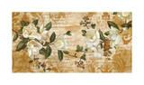 Magnolia Romance Reproduction procédé giclée par Chris Donovan