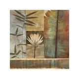 Palm Garden II Impressão giclée por John Seba
