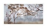 Early Morning Mist II Giclée-tryk af John Seba