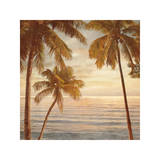 Palms on the Water II Giclee Print by John Seba
