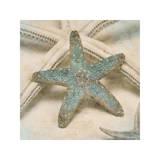 Coastal Gems III Impressão giclée por John Seba