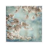 Aqua Blossoms II Impressão giclée por John Seba