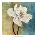 Full Bloom I Giclee Print by W. Green-Aldridge