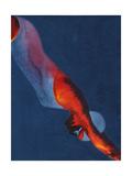 Diver 2 Giclee-trykk av Graham Dean