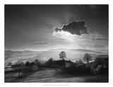 Light from Behind Giclee Print by Martin Henson