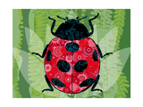 Lady Bug Giclée-vedos tekijänä Teofilo Olivieri